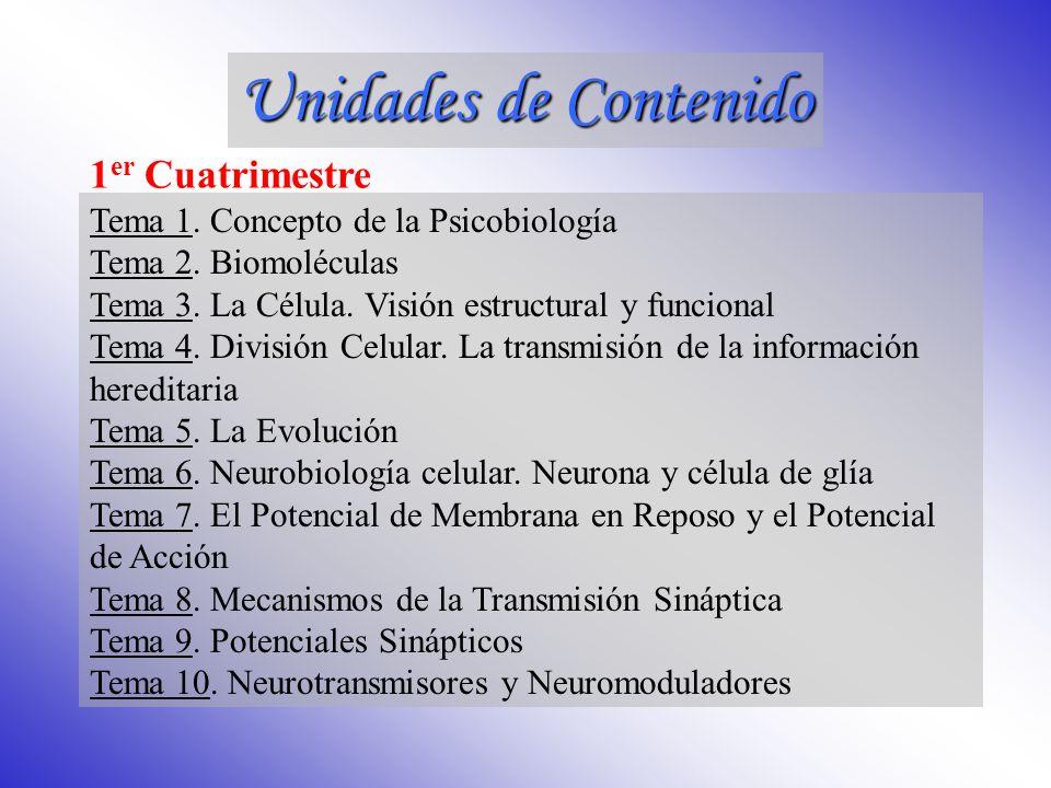 Unidad Didáctica I Introducción Unidad Didáctica II Biología Celular, Genética y Evolución Unidad Didáctica III Neurobiología Unidad Didáctica IV Neuroanatomía Funcional Unidades de Contenido