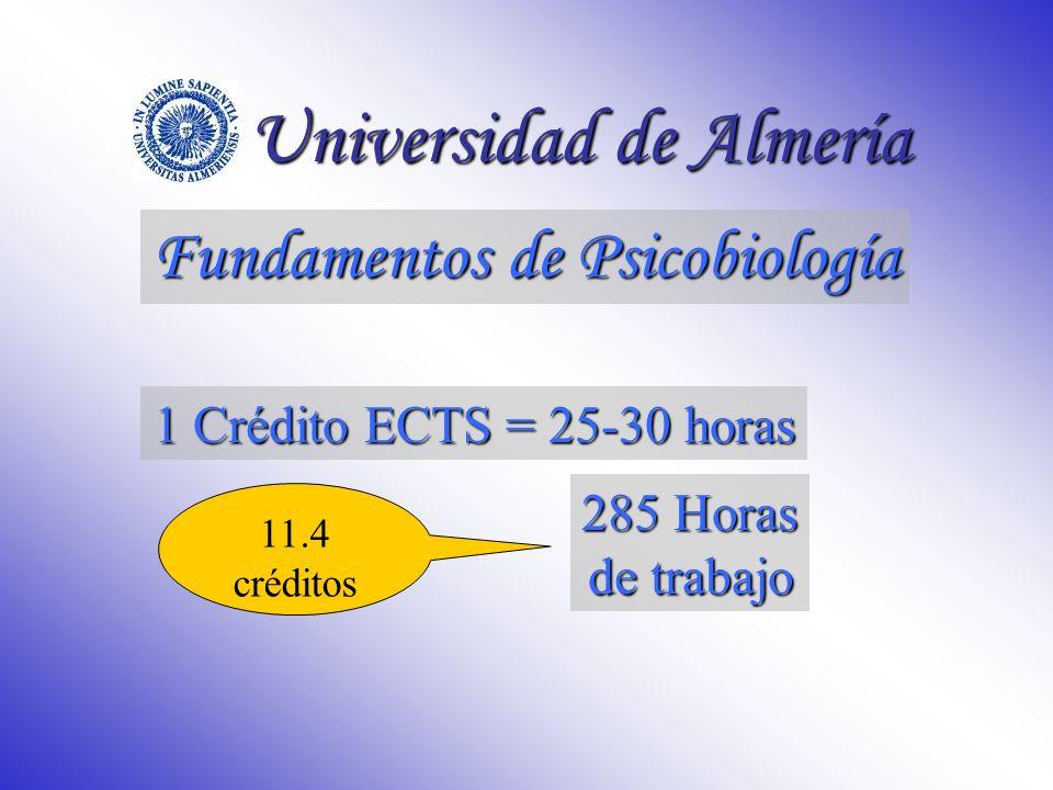 Unidades de Contenido 2º Cuatrimestre Tema 11.Introducción a la Neuroanatomía Tema 12.