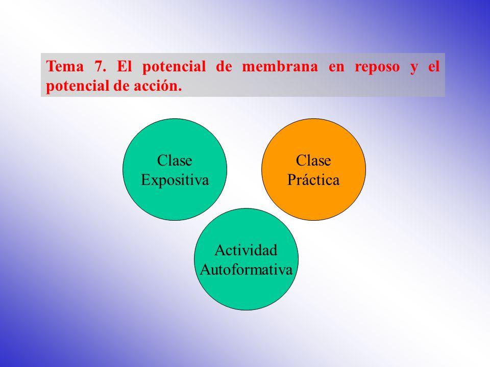 El potencial de membrana en reposo Propiedades de la membrana neuronal Base iónica del potencial de membrana El potencial de acción Principios básicos en la generación del potencial de acción Proceso de propagación del potencial de acción CLASE EXPOSITIVA