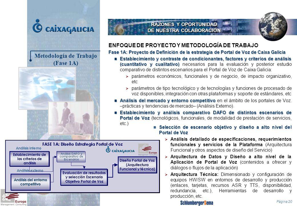 Página 20 RAZONES Y OPORTUNIDAD DE NUESTRA COLABORACIÓN Fase 1A: Proyecto de Definición de la estrategia de Portal de Voz de Caixa Galicia Establecimi