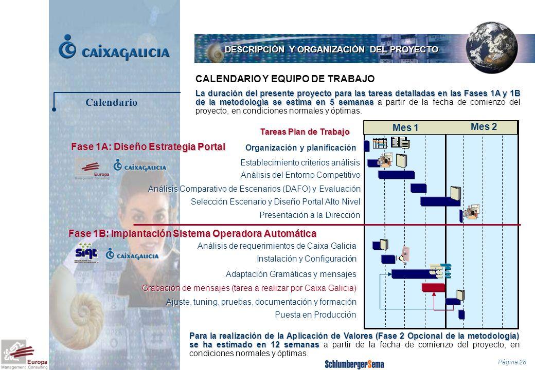 Página 28 CALENDARIO Y EQUIPO DE TRABAJO DESCRIPCIÓN Y ORGANIZACIÓN DEL PROYECTO La duración del presente proyecto para las tareas detalladas en las F