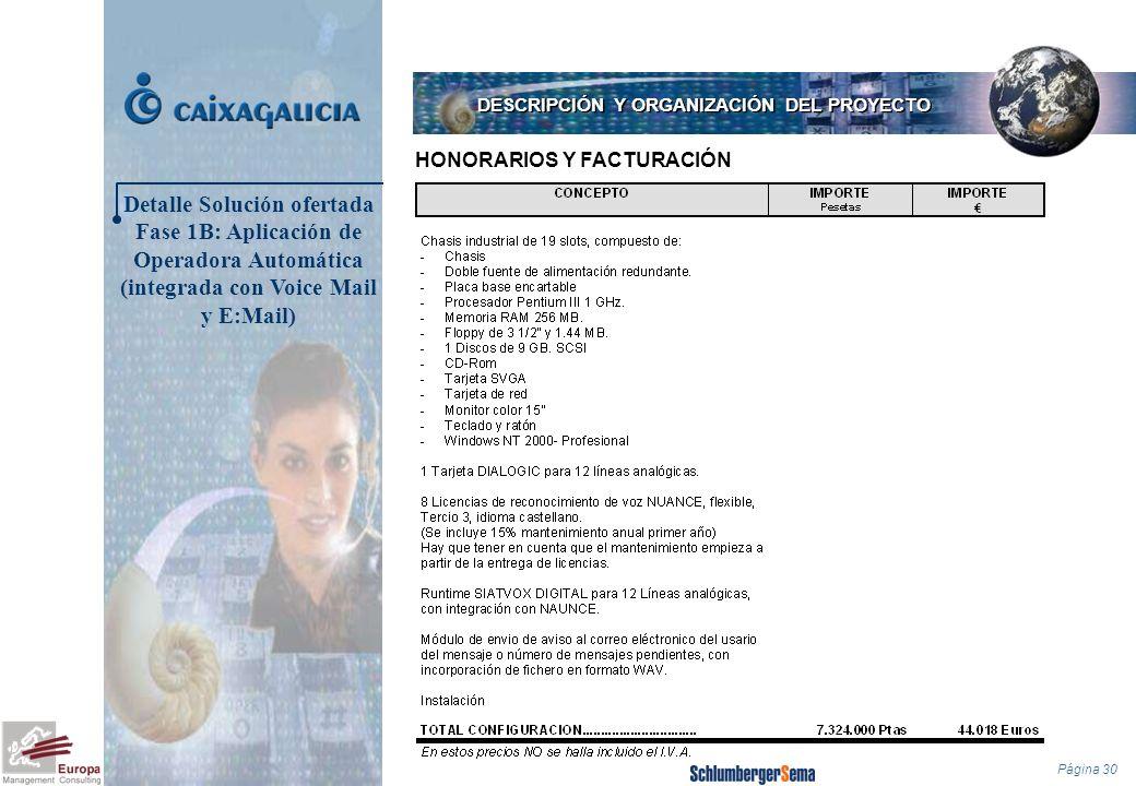 Página 30 HONORARIOS Y FACTURACIÓN DESCRIPCIÓN Y ORGANIZACIÓN DEL PROYECTO Detalle Solución ofertada Fase 1B: Aplicación de Operadora Automática (inte