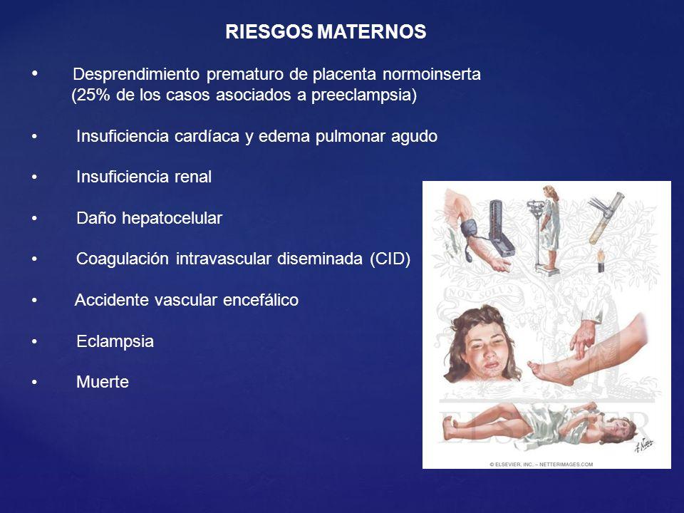 RIESGOS MATERNOS Desprendimiento prematuro de placenta normoinserta (25% de los casos asociados a preeclampsia) Insuficiencia cardíaca y edema pulmona
