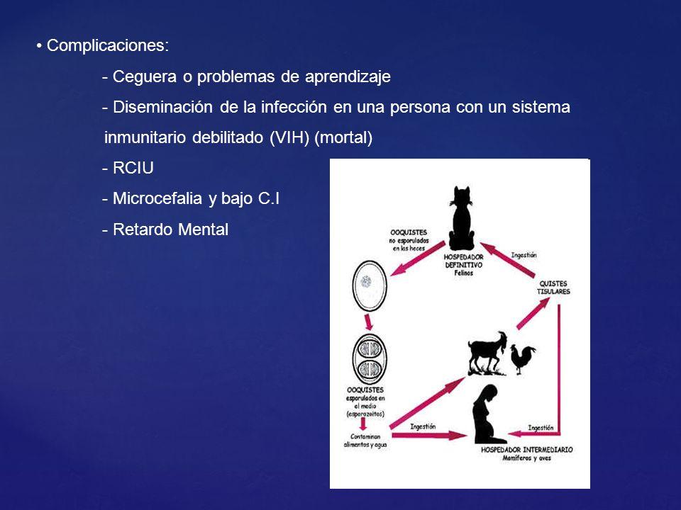 Complicaciones: - Ceguera o problemas de aprendizaje - Diseminación de la infección en una persona con un sistema inmunitario debilitado (VIH) (mortal