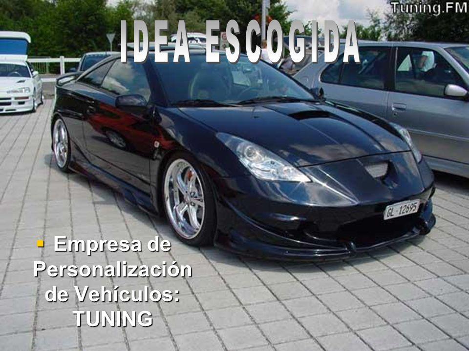 Empresa de Personalización de Vehículos: TUNING Empresa de Personalización de Vehículos: TUNING
