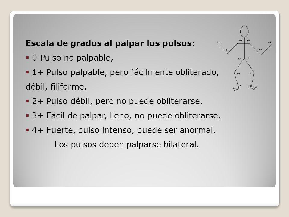 Escala de grados al palpar los pulsos: 0 Pulso no palpable, 1+ Pulso palpable, pero fácilmente obliterado, débil, filiforme. 2+ Pulso débil, pero no p
