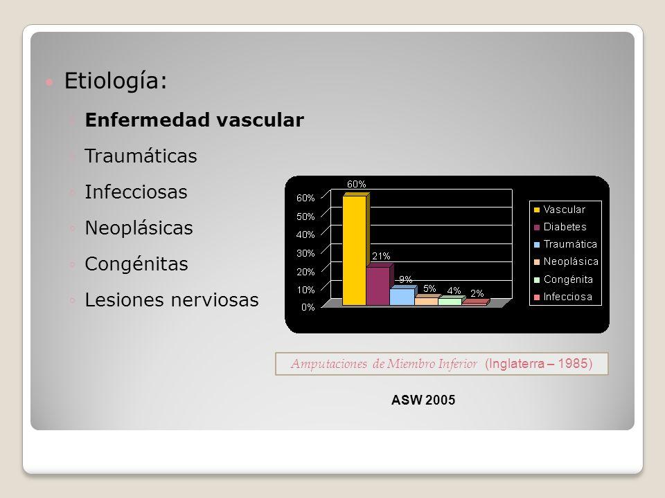 Etiología: Enfermedad vascular Traumáticas Infecciosas Neoplásicas Congénitas Lesiones nerviosas Amputaciones de Miembro Inferior (Inglaterra – 1985)