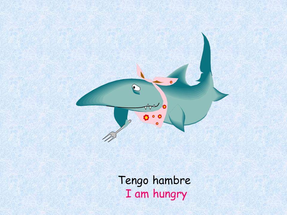 Tengo hambre I am hungry