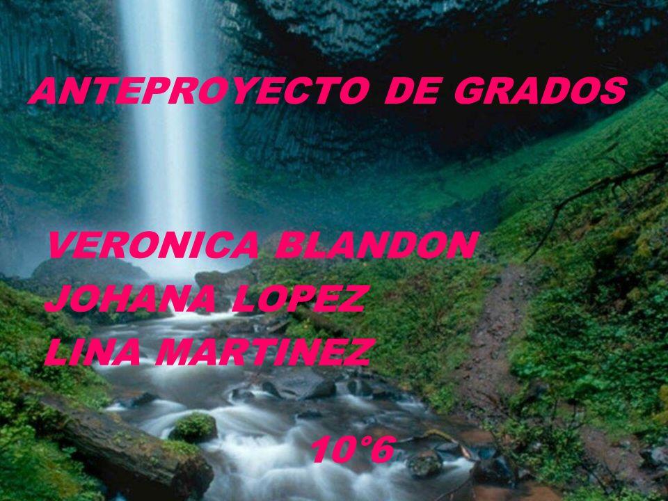 ANTEPROYECTO DE GRADOS VERONICA BLANDON JOHANA LOPEZ LINA MARTINEZ 10°6