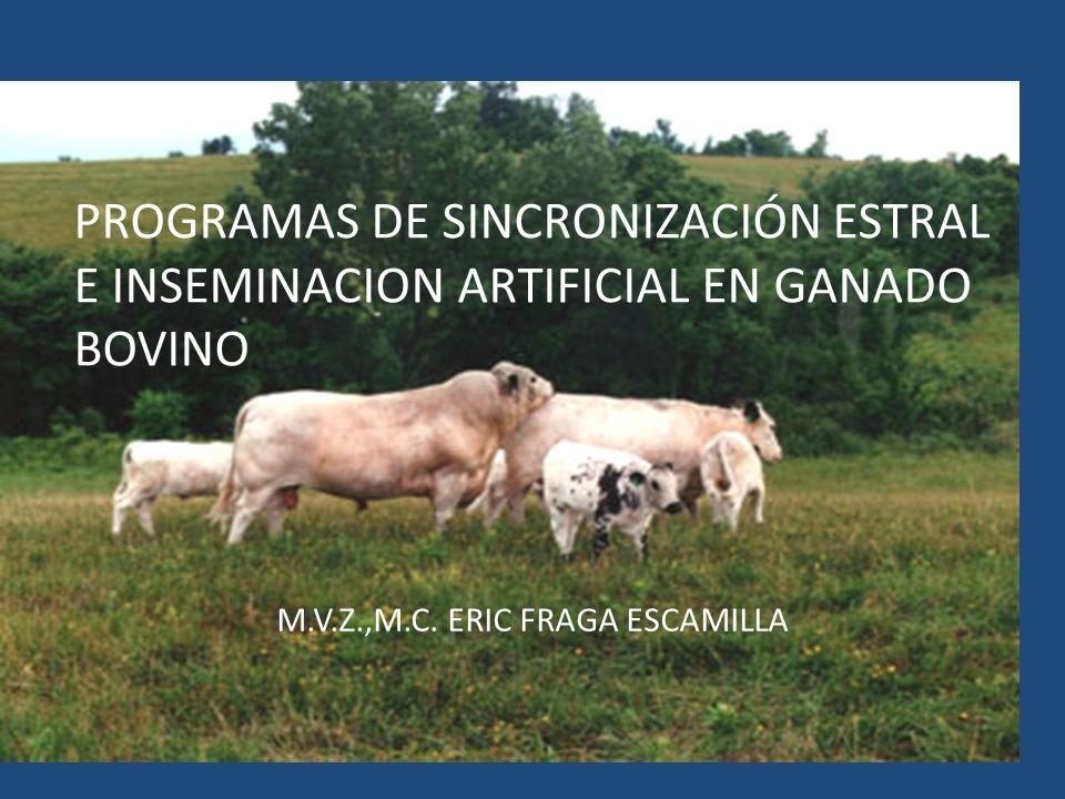 Sólo responden a la PGF las vacas con un CL activo!!!