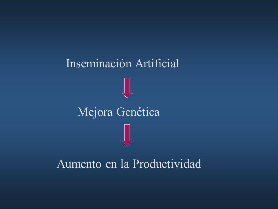 CRESTAR: PROTOCOLO BÁSICO INYECCIÓN NORG+V.E.