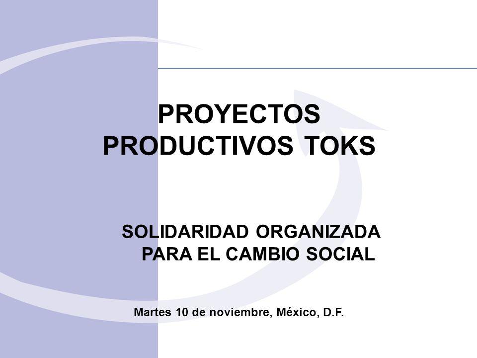 PROYECTOS PRODUCTIVOS TOKS SOLIDARIDAD ORGANIZADA PARA EL CAMBIO SOCIAL Martes 10 de noviembre, México, D.F.