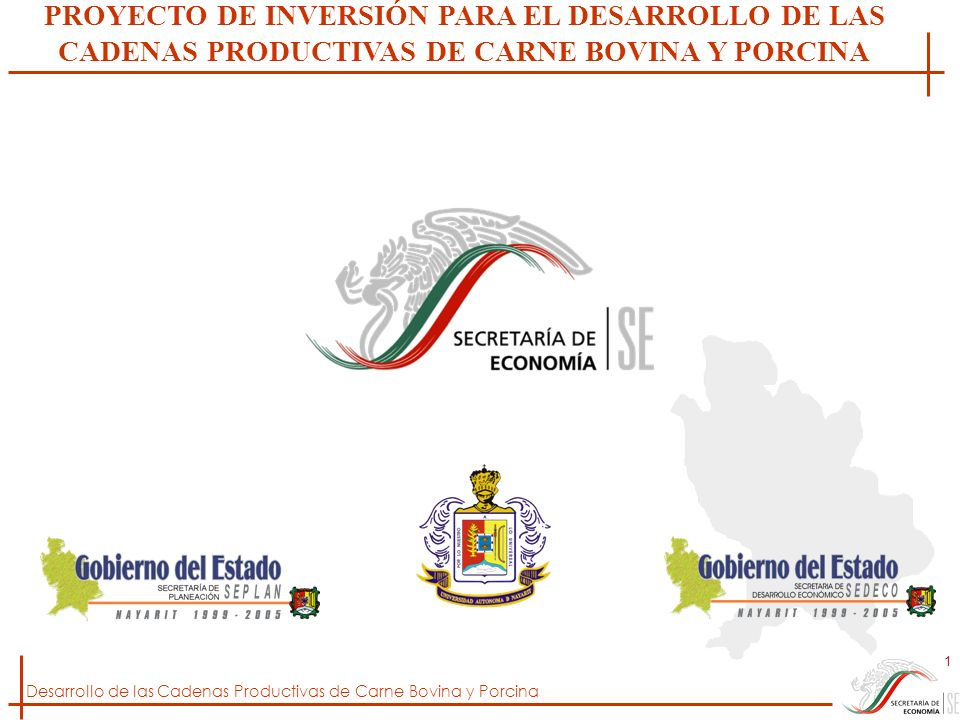 Desarrollo de las Cadenas Productivas de Carne Bovina y Porcina 1 PROYECTO DE INVERSIÓN PARA EL DESARROLLO DE LAS CADENAS PRODUCTIVAS DE CARNE BOVINA
