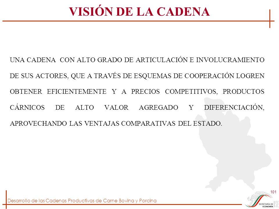 Desarrollo de las Cadenas Productivas de Carne Bovina y Porcina 101 VISIÓN DE LA CADENA UNA CADENA CON ALTO GRADO DE ARTICULACIÓN E INVOLUCRAMIENTO DE