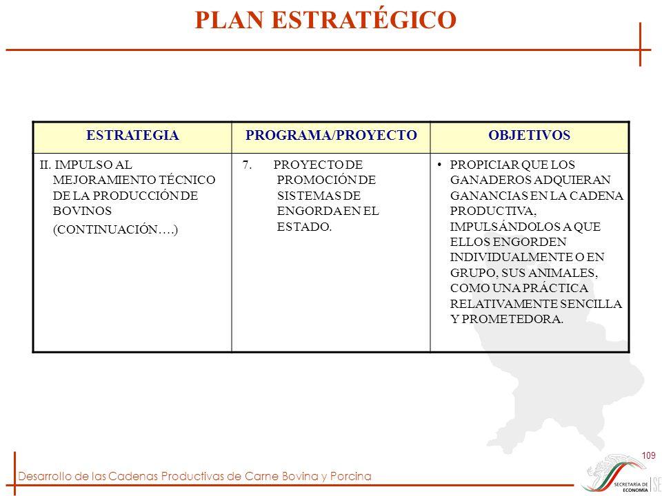 Desarrollo de las Cadenas Productivas de Carne Bovina y Porcina 109 ESTRATEGIAPROGRAMA/PROYECTOOBJETIVOS II. IMPULSO AL MEJORAMIENTO TÉCNICO DE LA PRO