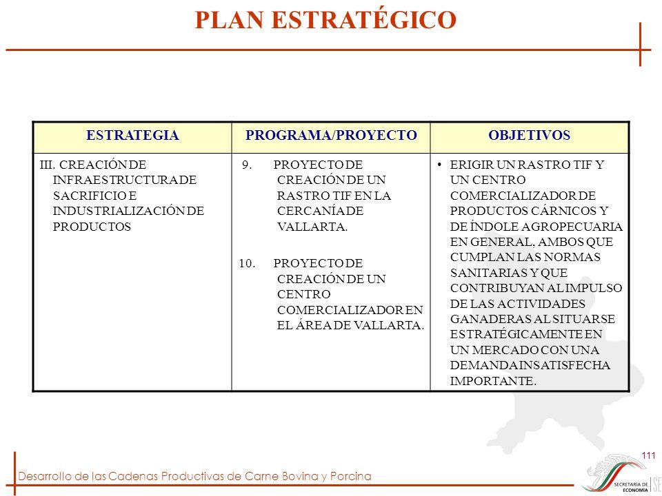 Desarrollo de las Cadenas Productivas de Carne Bovina y Porcina 111 ESTRATEGIAPROGRAMA/PROYECTOOBJETIVOS III. CREACIÓN DE INFRAESTRUCTURA DE SACRIFICI