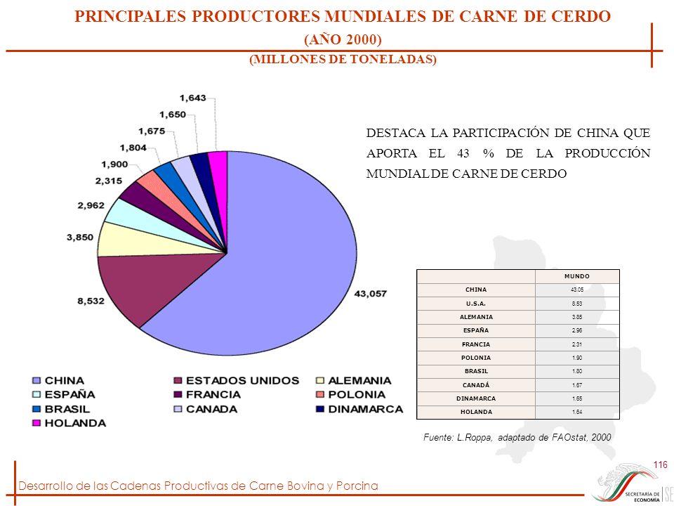 Desarrollo de las Cadenas Productivas de Carne Bovina y Porcina 116 PRINCIPALES PRODUCTORES MUNDIALES DE CARNE DE CERDO (AÑO 2000) (MILLONES DE TONELA