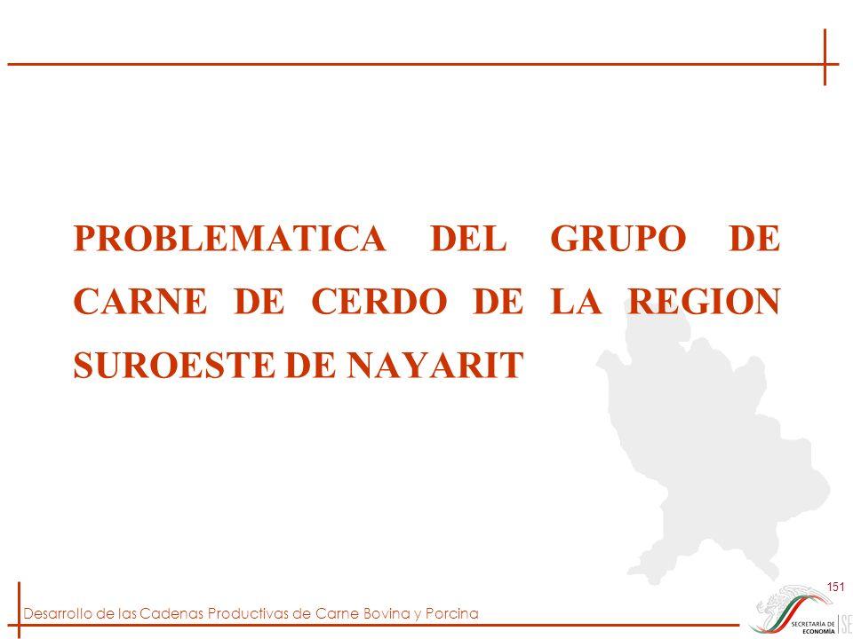 Desarrollo de las Cadenas Productivas de Carne Bovina y Porcina 151 PROBLEMATICA DEL GRUPO DE CARNE DE CERDO DE LA REGION SUROESTE DE NAYARIT
