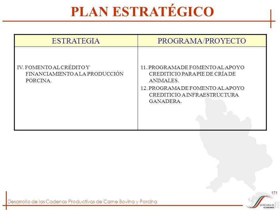 Desarrollo de las Cadenas Productivas de Carne Bovina y Porcina 171 ESTRATEGIAPROGRAMA/PROYECTO IV. FOMENTO AL CRÉDITO Y FINANCIAMIENTO A LA PRODUCCIÓ