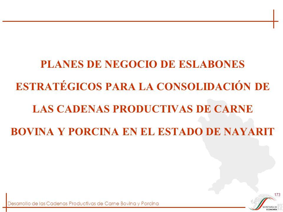 Desarrollo de las Cadenas Productivas de Carne Bovina y Porcina 173 PLANES DE NEGOCIO DE ESLABONES ESTRATÉGICOS PARA LA CONSOLIDACIÓN DE LAS CADENAS P