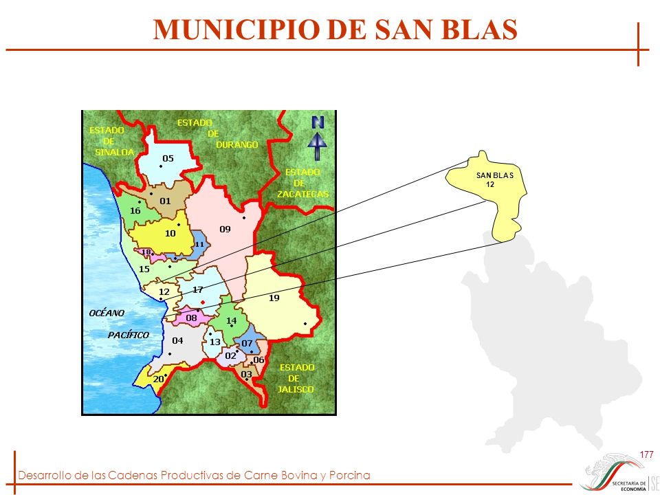 Desarrollo de las Cadenas Productivas de Carne Bovina y Porcina 177 SAN BLAS 12 MUNICIPIO DE SAN BLAS