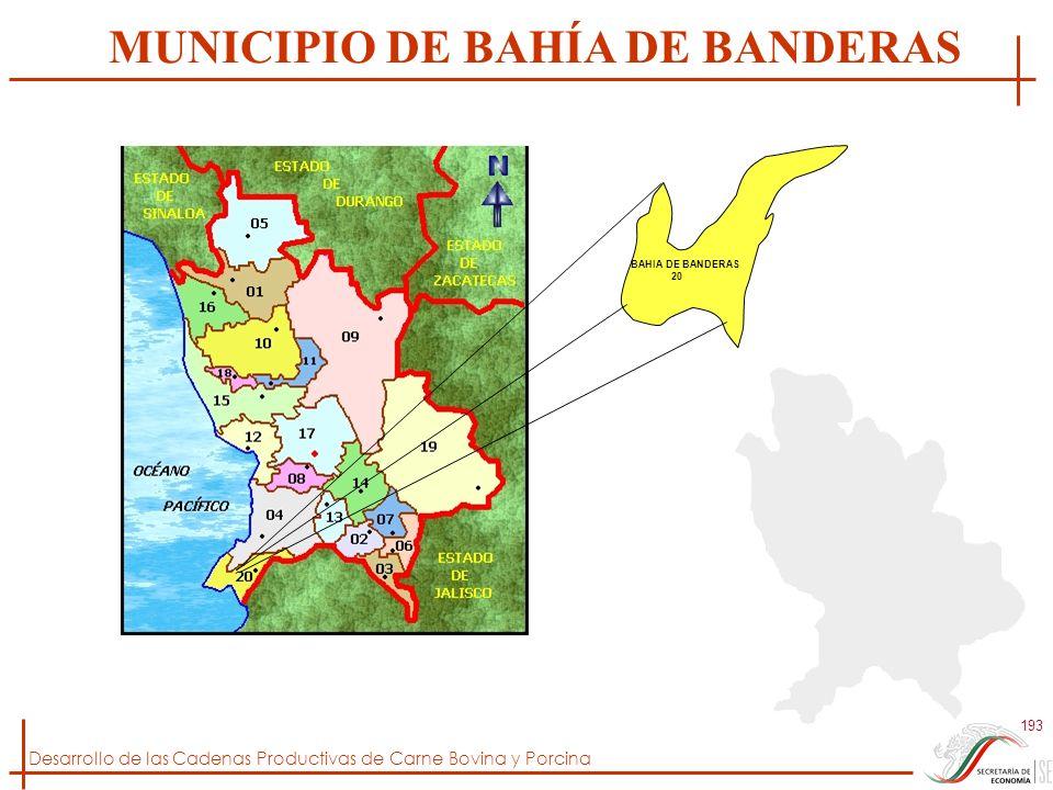 Desarrollo de las Cadenas Productivas de Carne Bovina y Porcina 193 BAHIA DE BANDERAS 20 MUNICIPIO DE BAHÍA DE BANDERAS