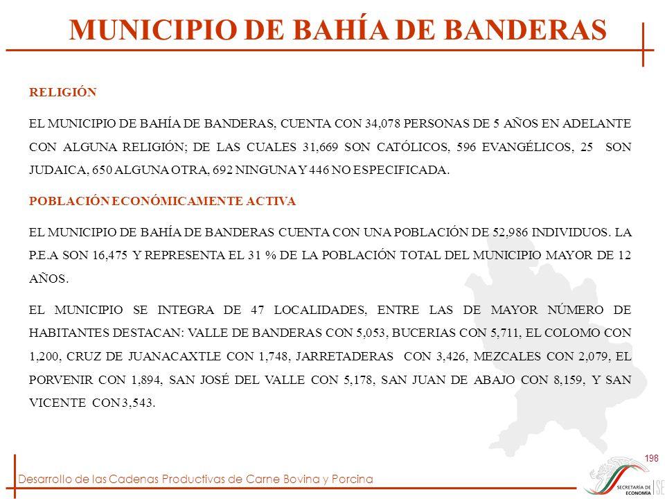 Desarrollo de las Cadenas Productivas de Carne Bovina y Porcina 198 RELIGIÓN EL MUNICIPIO DE BAHÍA DE BANDERAS, CUENTA CON 34,078 PERSONAS DE 5 AÑOS E