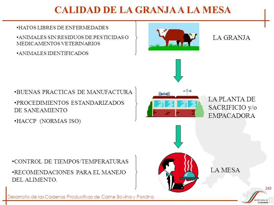 Desarrollo de las Cadenas Productivas de Carne Bovina y Porcina 249 LA GRANJA LA PLANTA DE SACRIFICIO y/o EMPACADORA LA MESA CALIDAD DE LA GRANJA A LA