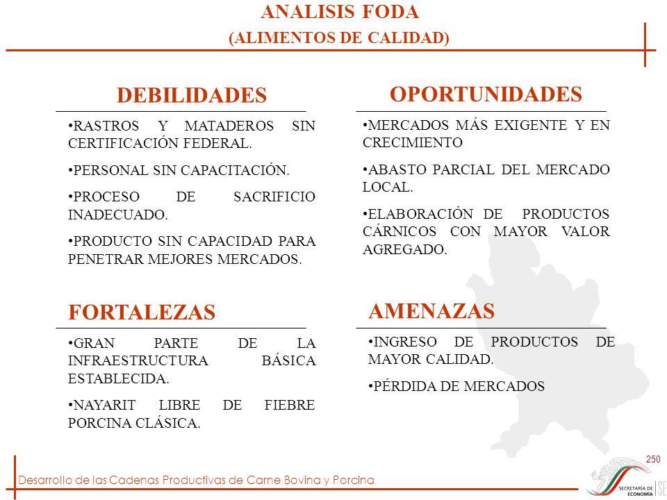 Desarrollo de las Cadenas Productivas de Carne Bovina y Porcina 250 DEBILIDADES RASTROS Y MATADEROS SIN CERTIFICACIÓN FEDERAL. PERSONAL SIN CAPACITACI