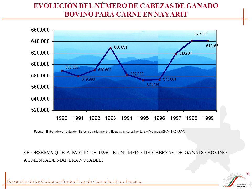 Desarrollo de las Cadenas Productivas de Carne Bovina y Porcina 59 EVOLUCIÓN DEL NÚMERO DE CABEZAS DE GANADO BOVINO PARA CARNE EN NAYARIT Fuente: Elab