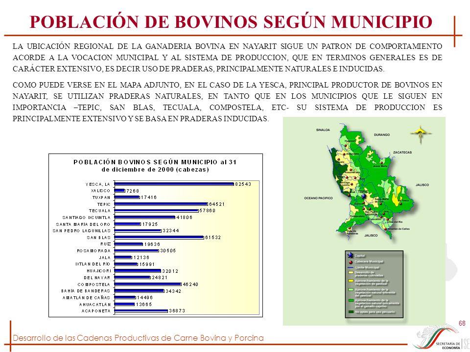 Desarrollo de las Cadenas Productivas de Carne Bovina y Porcina 68 LA UBICACIÓN REGIONAL DE LA GANADERIA BOVINA EN NAYARIT SIGUE UN PATRON DE COMPORTA