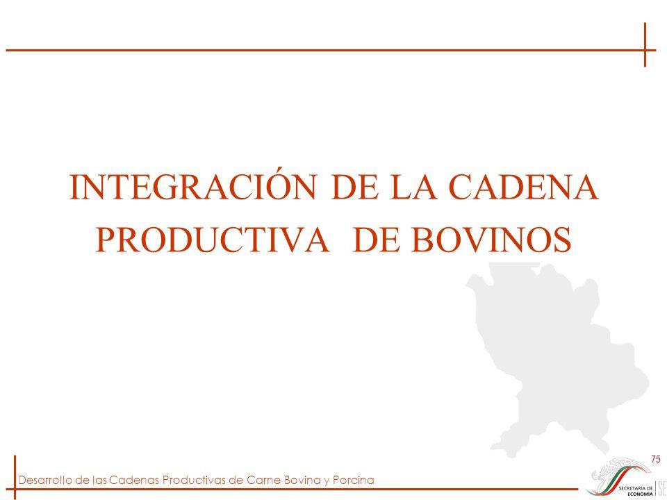 Desarrollo de las Cadenas Productivas de Carne Bovina y Porcina 75 INTEGRACIÓN DE LA CADENA PRODUCTIVA DE BOVINOS