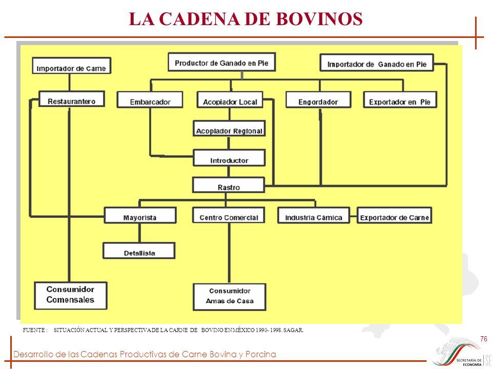 Desarrollo de las Cadenas Productivas de Carne Bovina y Porcina 76 LA CADENA DE BOVINOS FUENTE : SITUACIÓN ACTUAL Y PERSPECTIVA DE LA CARNE DE BOVINO