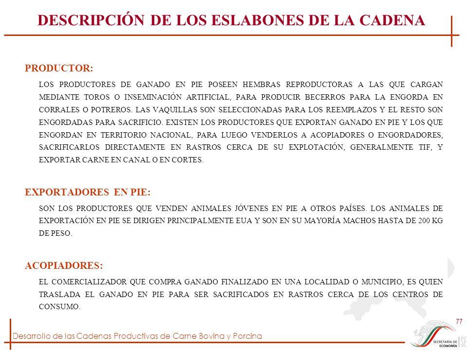 Desarrollo de las Cadenas Productivas de Carne Bovina y Porcina 77 DESCRIPCIÓN DE LOS ESLABONES DE LA CADENA PRODUCTOR: LOS PRODUCTORES DE GANADO EN P