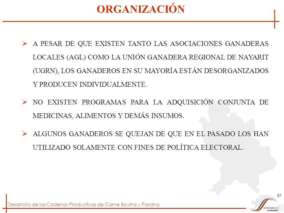 Desarrollo de las Cadenas Productivas de Carne Bovina y Porcina 87 A PESAR DE QUE EXISTEN TANTO LAS ASOCIACIONES GANADERAS LOCALES (AGL) COMO LA UNIÓN