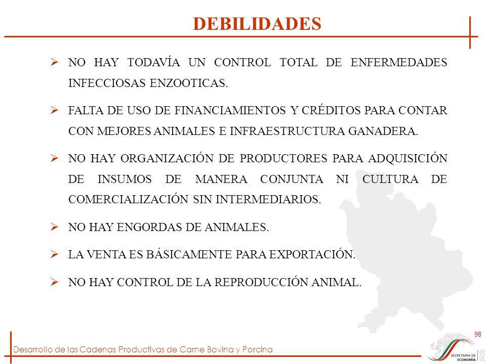Desarrollo de las Cadenas Productivas de Carne Bovina y Porcina 98 NO HAY TODAVÍA UN CONTROL TOTAL DE ENFERMEDADES INFECCIOSAS ENZOOTICAS. FALTA DE US