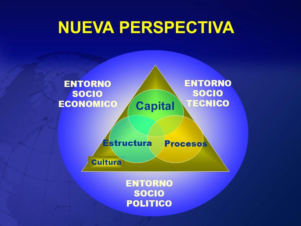 NUEVA PERSPECTIVA Cultura Capital Estructura Procesos ENTORNO SOCIO TECNICO ENTORNO SOCIO POLITICO ENTORNO SOCIO ECONOMICO