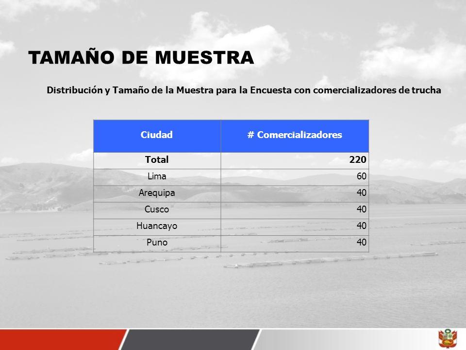 TAMAÑO DE MUESTRA Ciudad# Comercializadores Total220 Lima60 Arequipa40 Cusco40 Huancayo40 Puno40 Distribución y Tamaño de la Muestra para la Encuesta