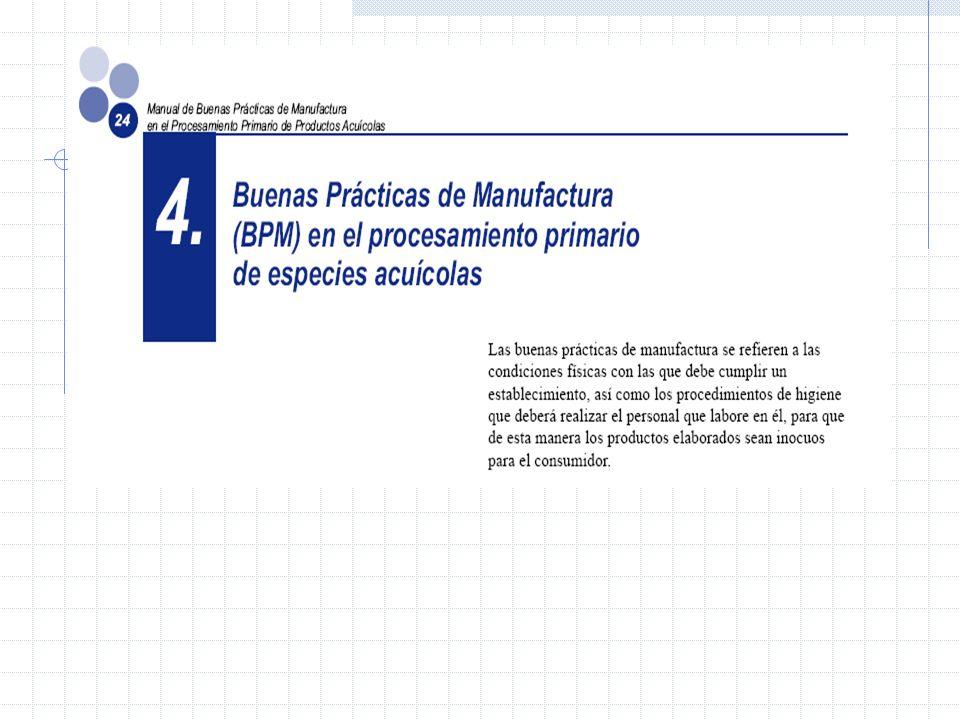 Las BPM Las Buenas Prácticas de Manufactura (BPM) se han desarrollado por una mayor exigencia de los consumidores al momento de adquirir alimentos. No