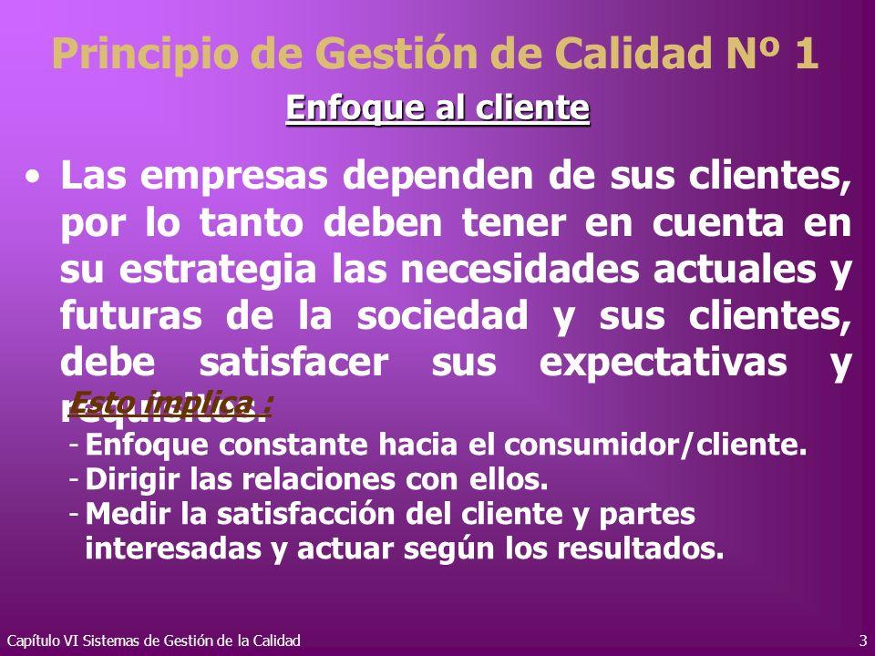 Capítulo VI Sistemas de Gestión de la Calidad3 Enfoque al cliente Las empresas dependen de sus clientes, por lo tanto deben tener en cuenta en su estr