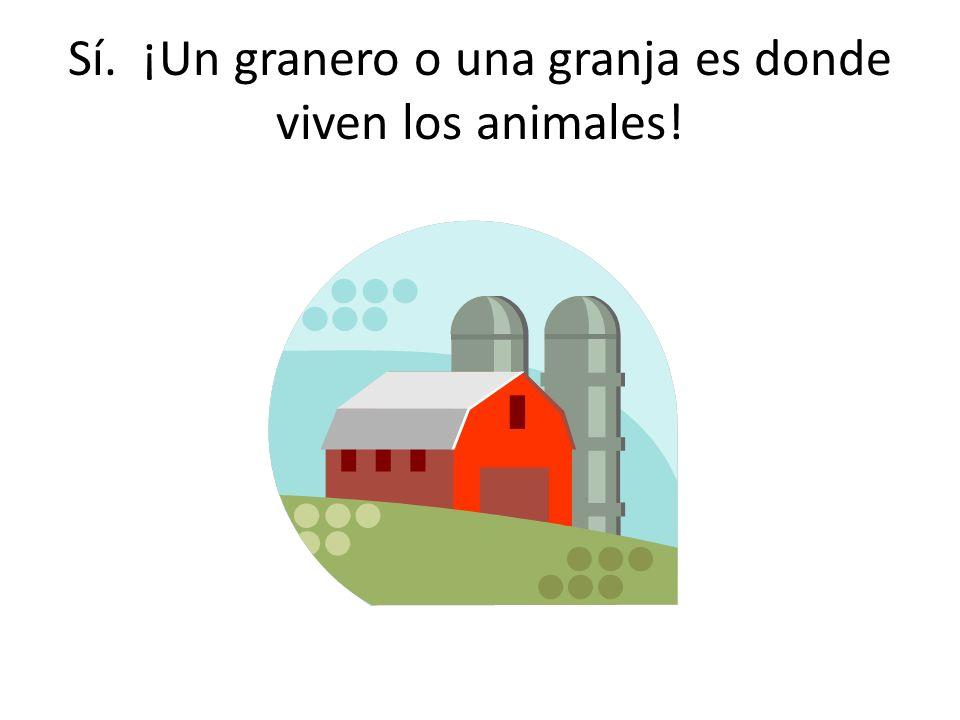 ¿Donde viven los animales?