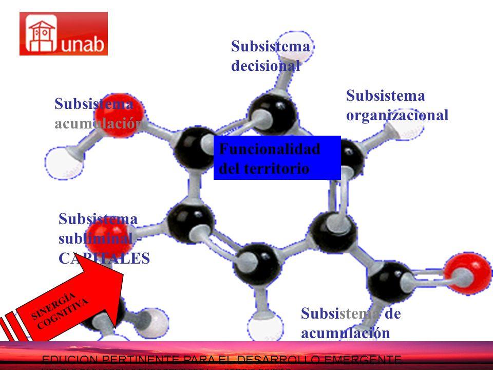 Subsistema acumulación Subsistema decisional Subsistema organizacional Subsistema de acumulación Subsistema subliminal - CAPITALES Funcionalidad del t