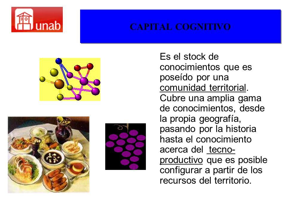 CAPITAL COGNITIVO Es el stock de conocimientos que es poseído por una comunidad territorial. Cubre una amplia gama de conocimientos, desde la propia g