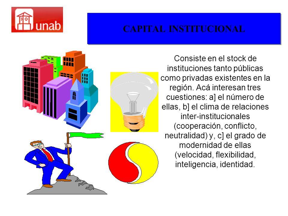 CAPITAL INSTITUCIONAL Consiste en el stock de instituciones tanto públicas como privadas existentes en la región. Acá interesan tres cuestiones: a] el