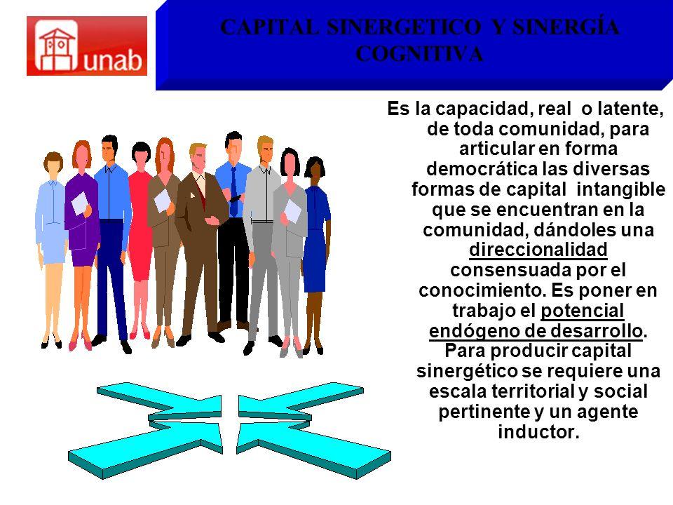 CAPITAL SINERGETICO Y SINERGÍA COGNITIVA Es la capacidad, real o latente, de toda comunidad, para articular en forma democrática las diversas formas d
