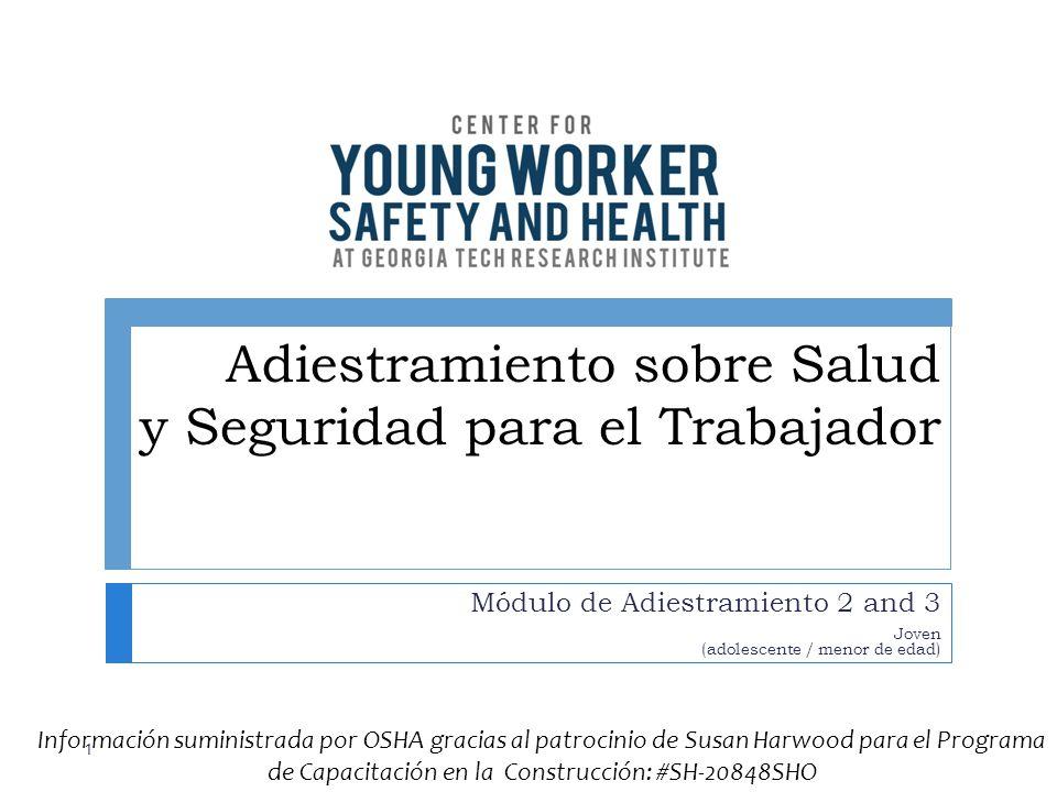 Adiestramiento sobre Salud y Seguridad para el Trabajador Módulo de Adiestramiento 2 and 3 Joven (adolescente / menor de edad) 1 Información suministr