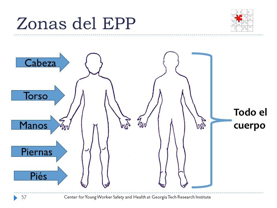 Center for Young Worker Safety and Health at Georgia Tech Research Institute Zonas del EPP 57 Cabeza Torso Manos Piernas Piés Todo el cuerpo