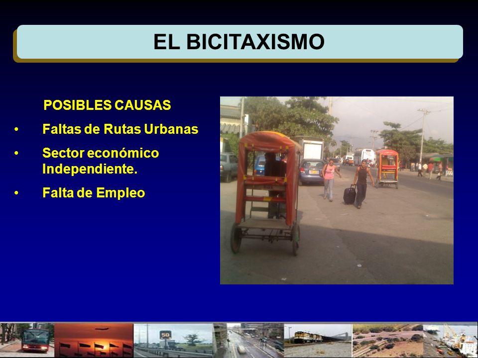 EL BICITAXISMO POSIBLES CAUSAS Faltas de Rutas Urbanas Sector económico Independiente.