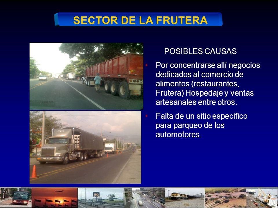 SECTOR DE LA FRUTERA POSIBLES CAUSAS Por concentrarse allí negocios dedicados al comercio de alimentos (restaurantes, Frutera) Hospedaje y ventas artesanales entre otros.