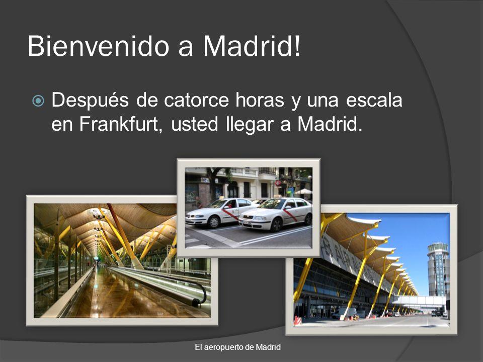 Bienvenido a Madrid.Después de catorce horas y una escala en Frankfurt, usted llegar a Madrid.